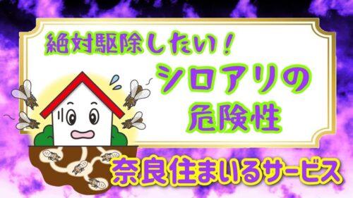 絶対駆除したい!シロアリの危険性について奈良県シロアリ駆除の住まいるサービスがお答えします