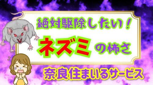 絶対駆除したい!ネズミ被害について奈良県ネズミ駆除の住まいるサービスがお答えします