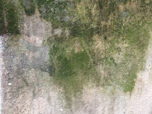 奈良県外壁塗装住まいるサービス